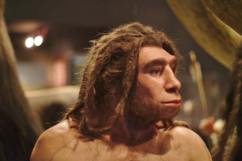 Изображение Биполярочка: гены, унаследованные от неандертальце…